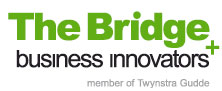 The Bridge Innovators
